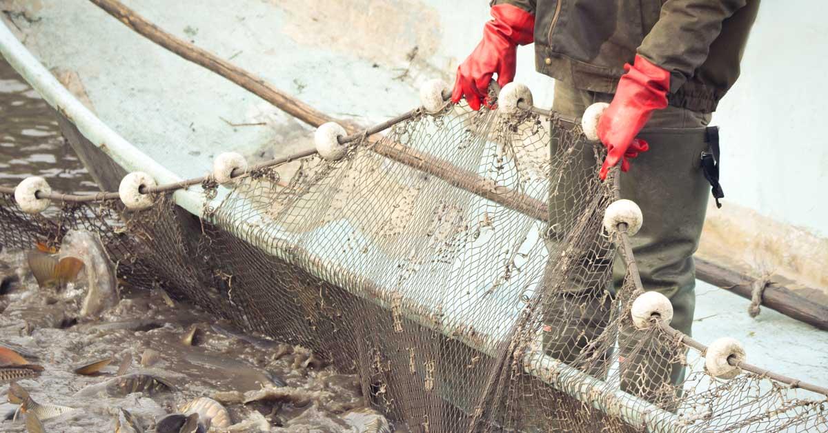 Universidad Nacional se une a las voces en contra de la pesca de arrastre