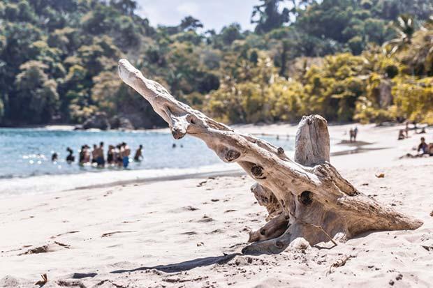 Costa Rica en top 20 de naciones protectoras del ambiente