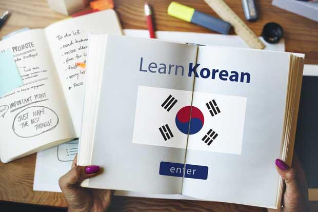 """Coreano, inglés y creación de """"apps"""" son parte de los cursos que ofrecerá la UNA"""