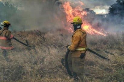 Conozca qué hacer en caso de presenciar un incendio forestal