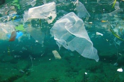 CNFL recupera 500 toneladas de basura en cuenca del río Virilla