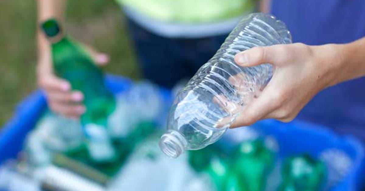 Elimine el plástico de un solo uso en cinco pasos