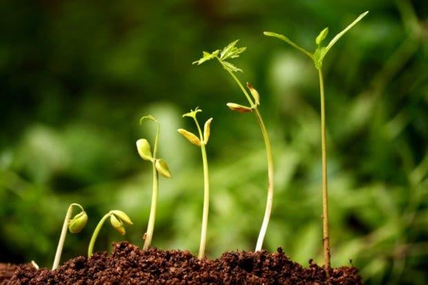 País invierte ¢56 mil millones en protección ambiental