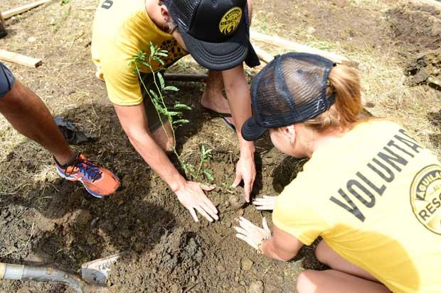 Fifco recluta voluntarios en pro del ambiente
