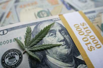 California estudia la viabilidad de un banco público de marihuana para empresas