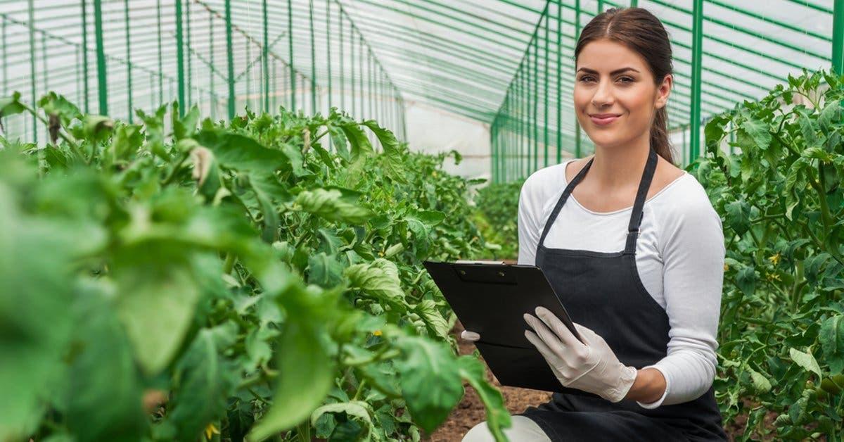 INS renovó seguros agropecuarios promoviendo adaptación al cambio climático