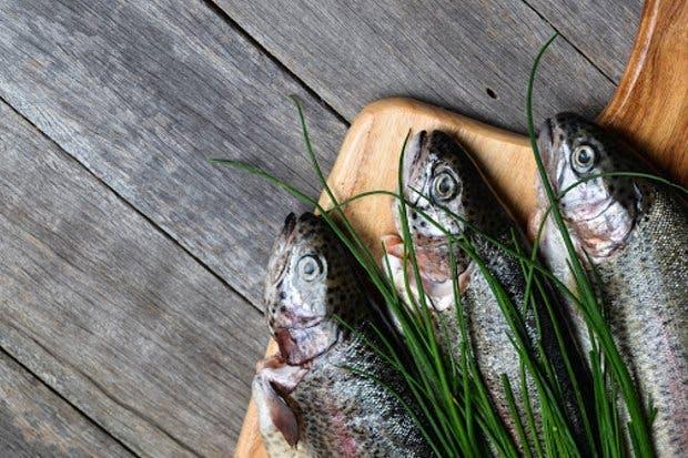 Conozca 10 consejos para adquirir pescado y mariscos esta Semana Santa