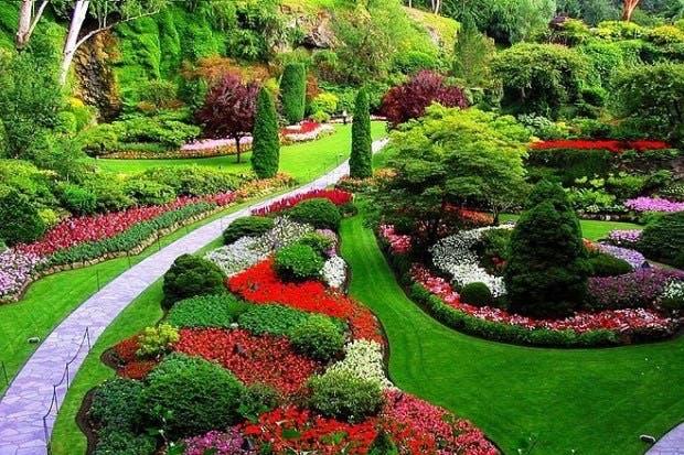 Conozca sobre paisajismo, jardinería y sistemas constructivos en los siguientes cursos