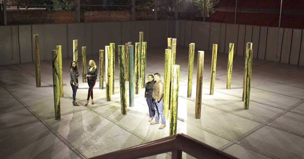 Museo de Arte y Diseño Contemporáneo ofrece dos nuevas muestras