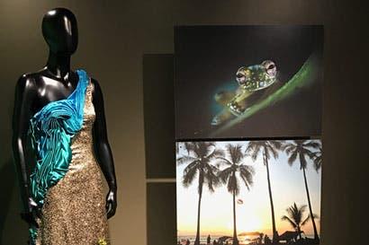 Con cinco vestidos, artista retrata la historia socioeconómica del país