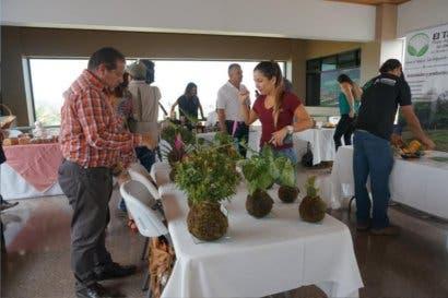 """Más de 300 emprendedores expondrán sus productos en feria """"El gustico"""""""