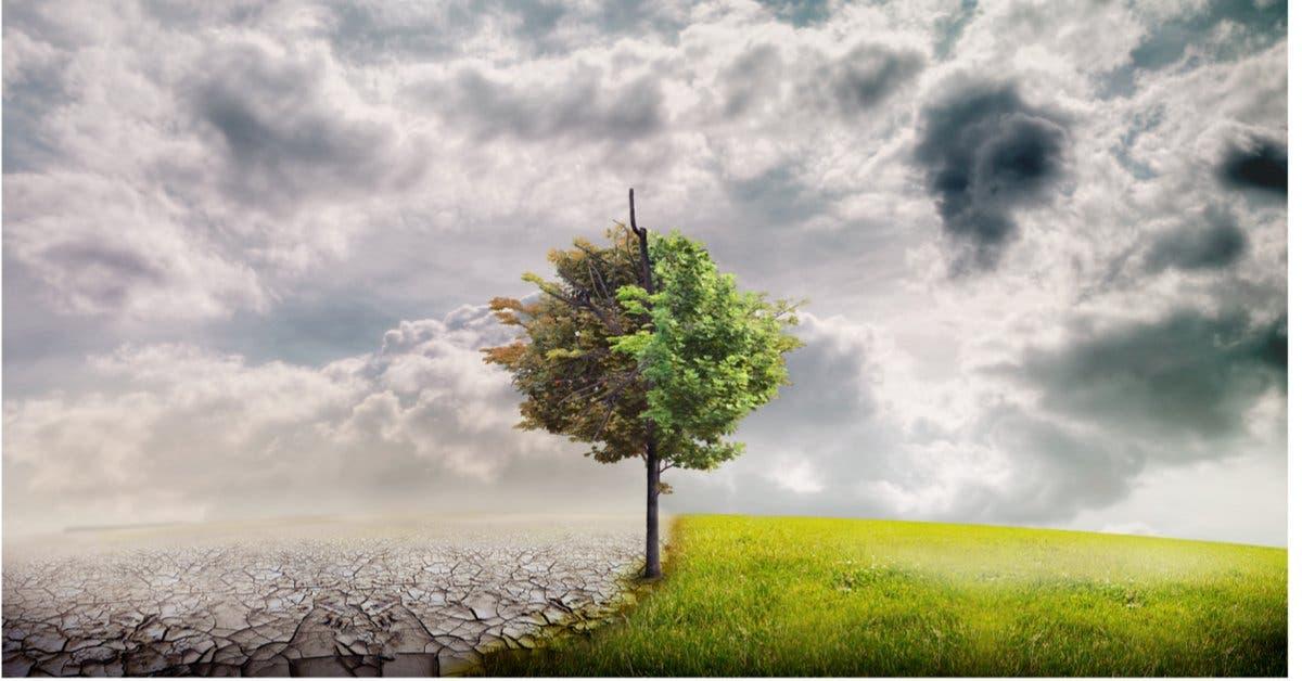Monteverde realizará feria educacional sobre el cambio climático