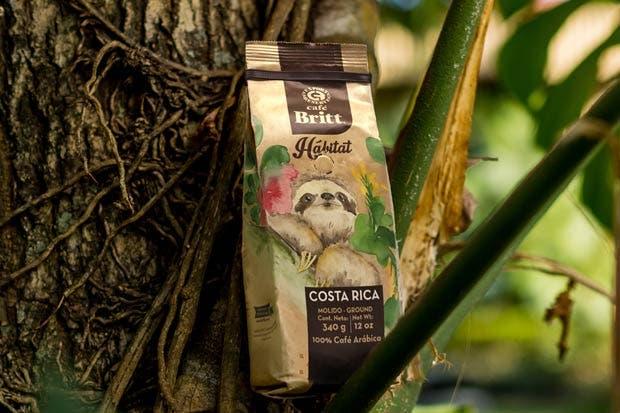 Britt apoyará liberación de perezosos con café gourmet