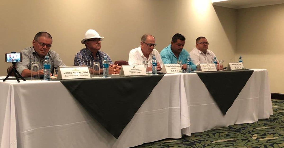 Agro pide barreras fitosanitarias para proteger la producción local