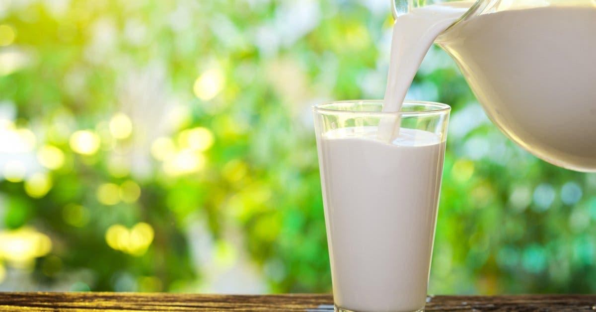 Empresarios lecheros celebrarán su día en Cartago