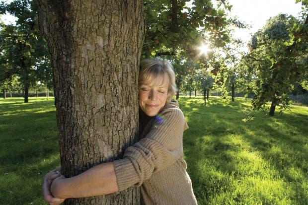 Abrace a los árboles