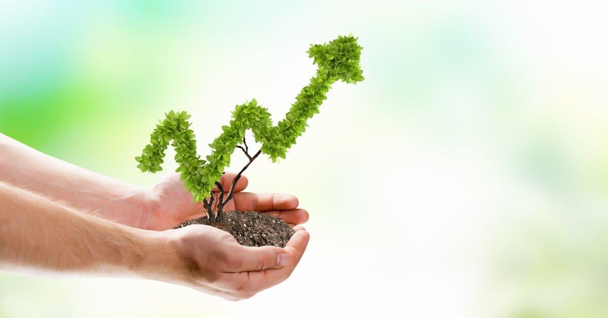 Bolsa Nacional de Valores se une a programa sostenible de la ONU