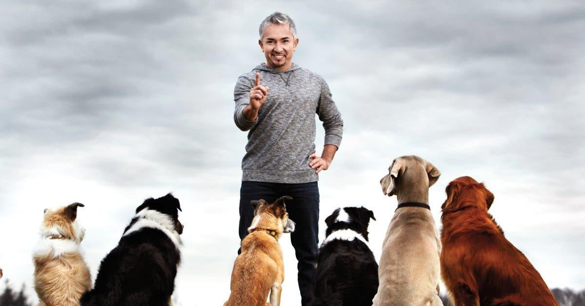 ¿Tiene perros? Conozca a Cesar Millan de forma gratuita