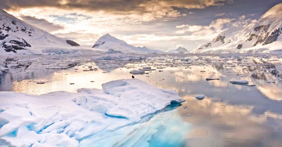 Ni la Antártida se salva del plástico contaminante
