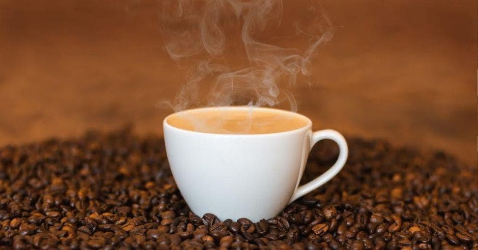 Estudio revela que 8,4 de cada 10 costarricenses toma café