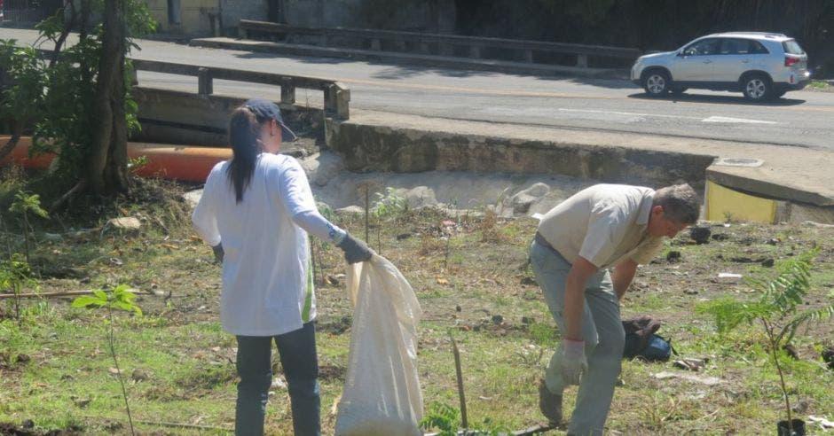 Voluntarios sembrando árboles