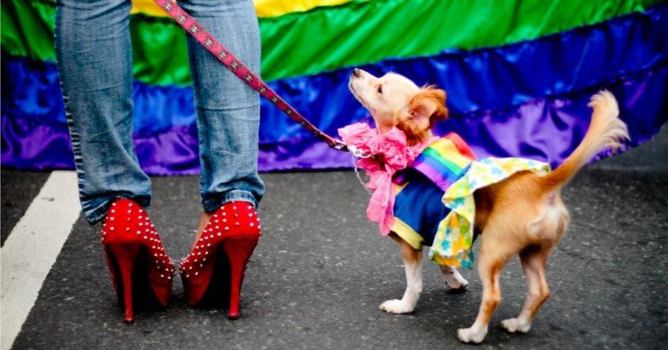 Un tránsgenero con tacones altos sostiene a su perro