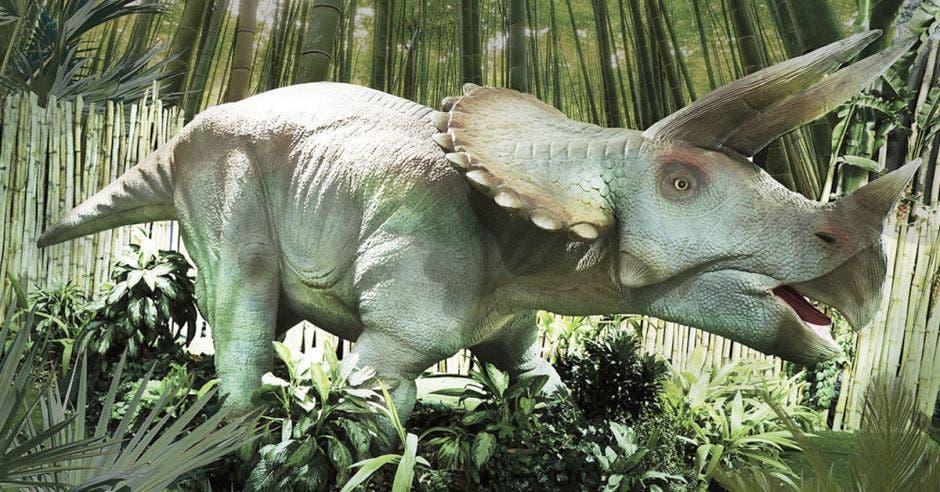 Dinosaurios animatronics conquistan el Museo de los Niños