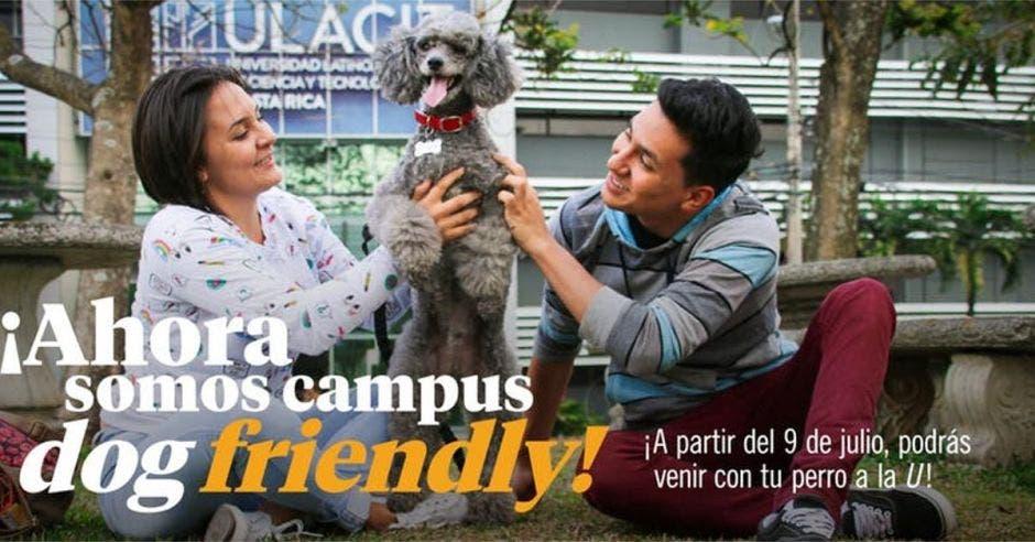 """Este lunes el campus de Ulacit será el primero """"dog friendly"""" de la región"""