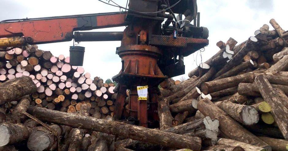 Hacienda busca recuperar ¢1 mil millones embargando fábrica de tarimas