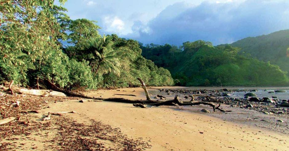 Isla del Coco invita a senderistas ticos a descubrir la esmeralda del Pacífico