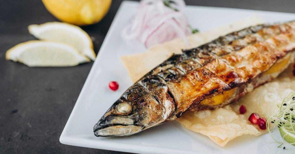 Latinos consumirán un 33% más de pescado en 2030