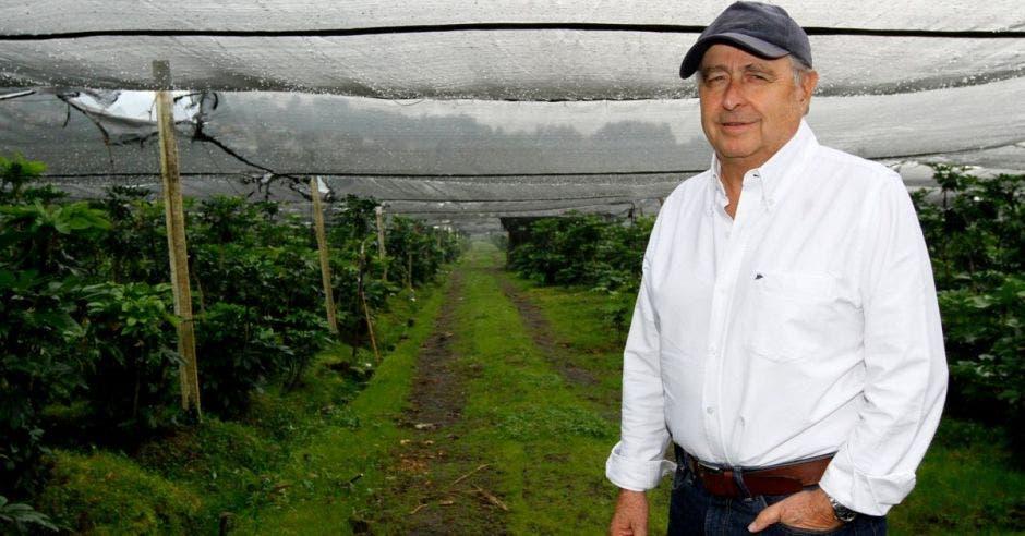 """Juan Rafael Lizano: """"Agro se opone rotundamente al plan fiscal"""""""