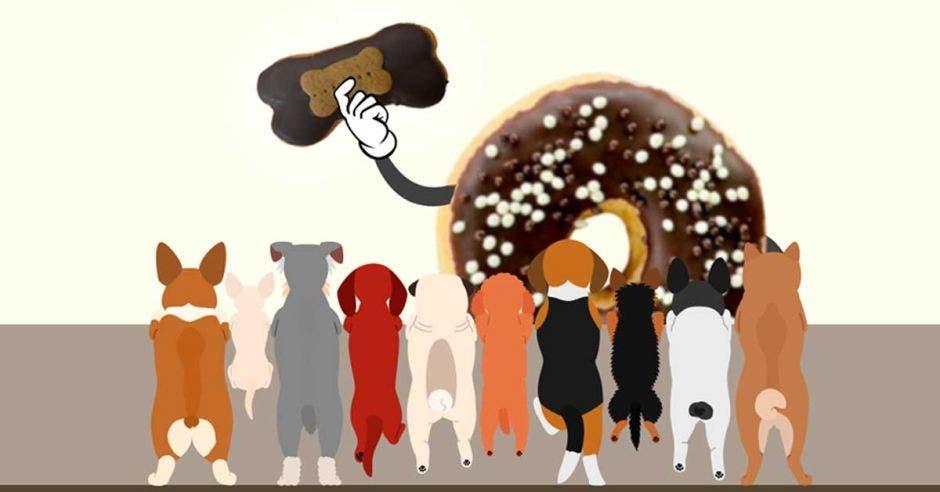 Doña Dona destinará parte de ganancias de nuevo producto a perros