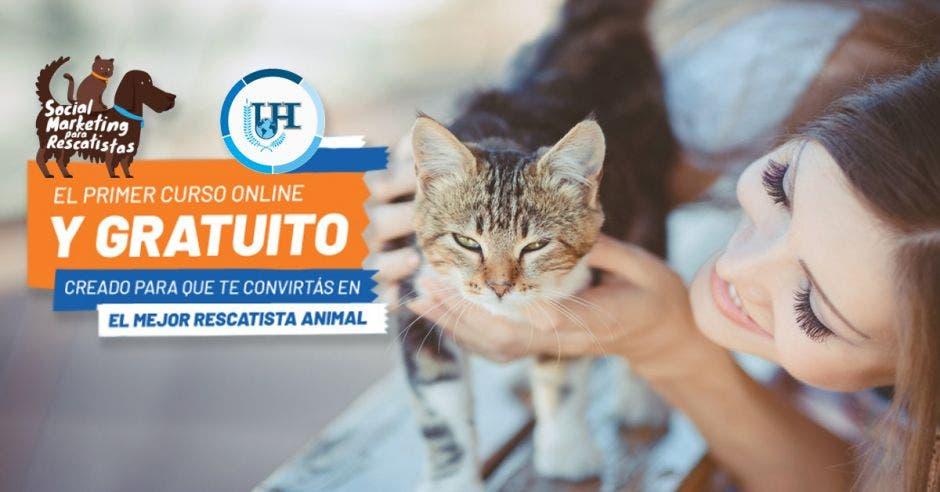 Rescatista de gato
