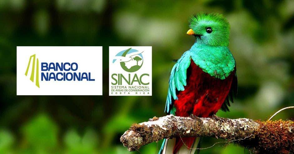 Banco Nacional y Sinac firman convenio para potenciar áreas silvestres