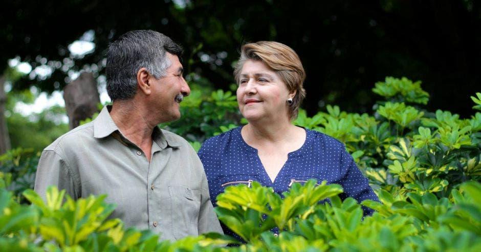Pareja en Puriscal ofrece asesoría para cultivo de hortalizas y flores