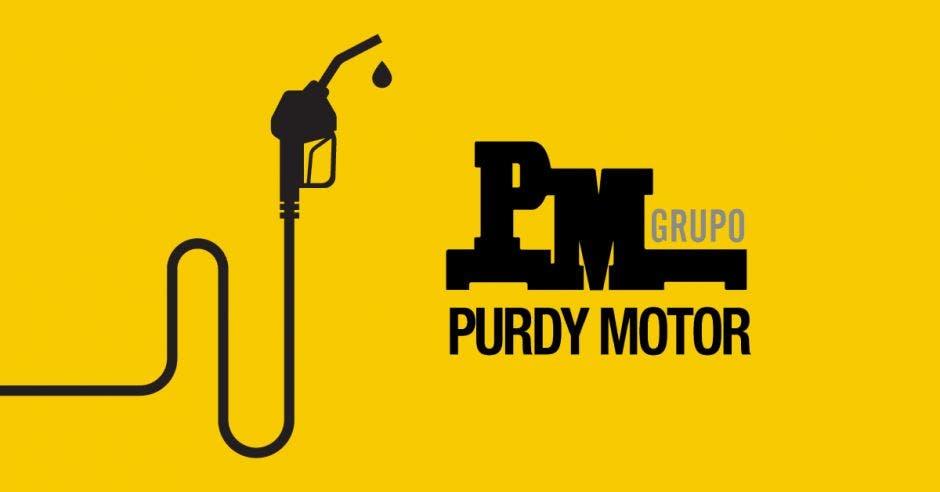 Grupo Purdy Motor