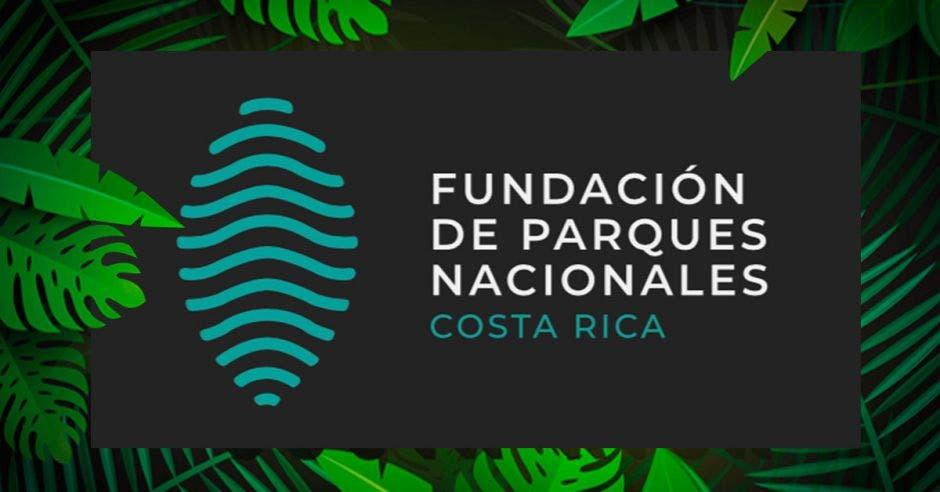 Nuevo logo de la fundación sobre un fondo oscuro