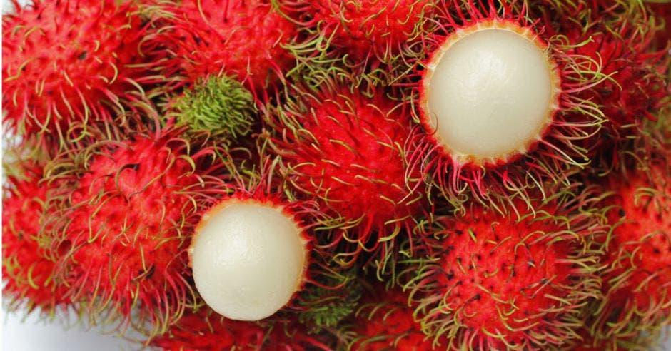 Mercado canadiense abre puertas a frutas exóticas costarricenses