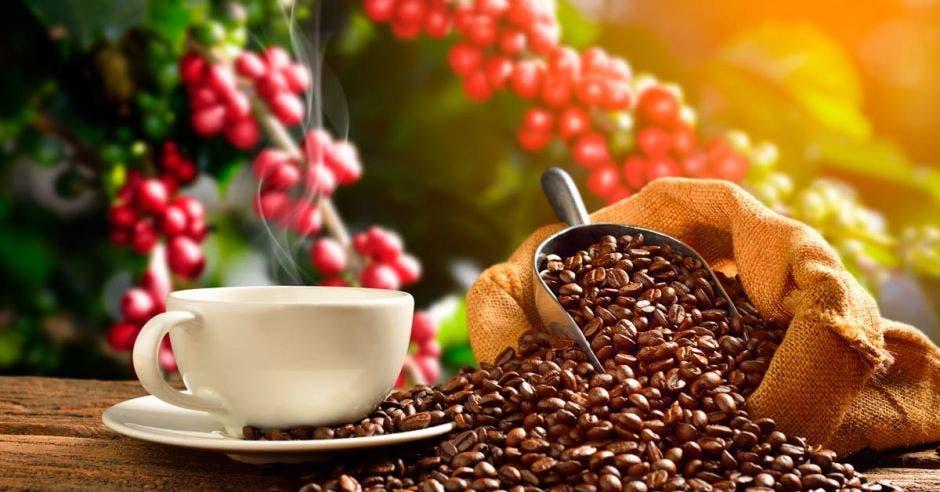 granos y taza de café