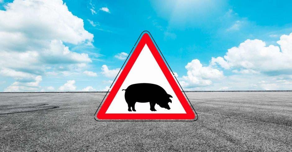 imagen de prevención en animales