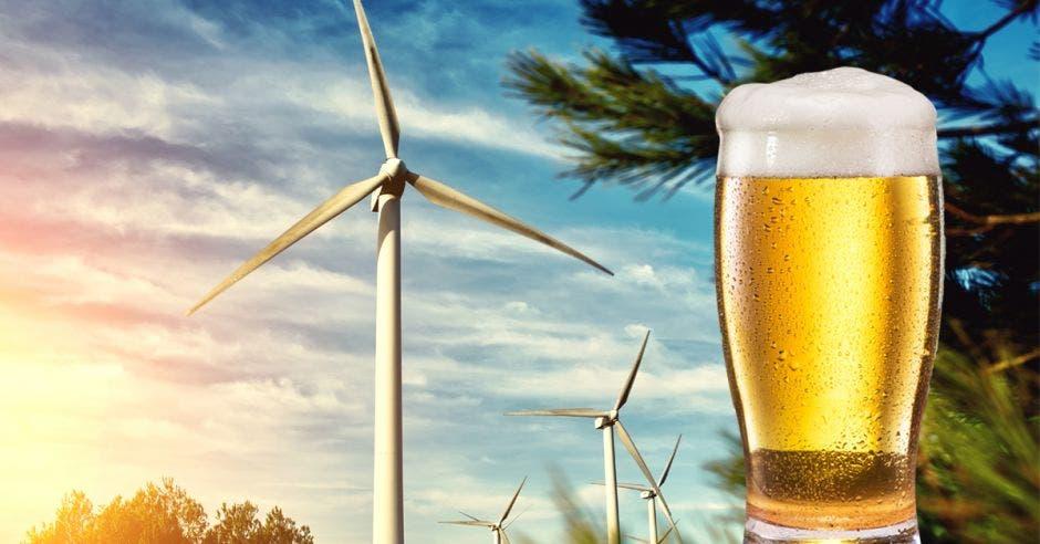 Cerveza y molinos de viento