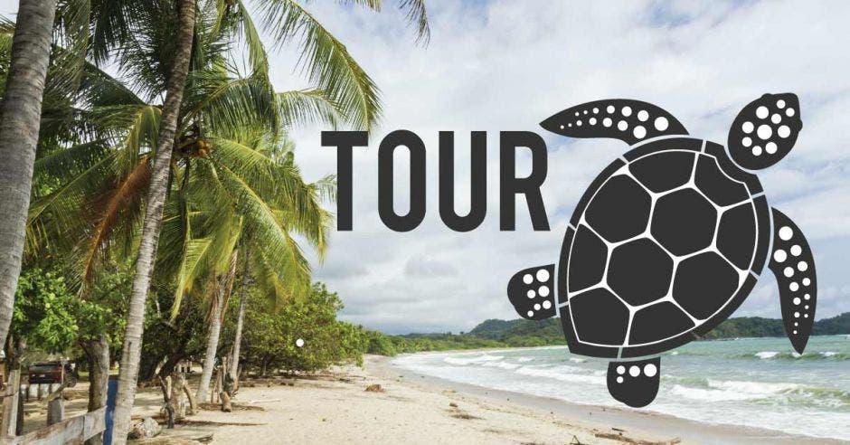 tour tortugas