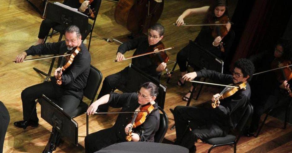 Varios violinistas de la orquesta en concierto