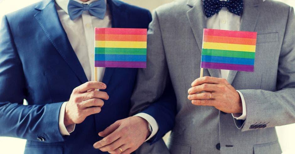 En vísperas de toma de decisión: unión entre personas del mismo sexo