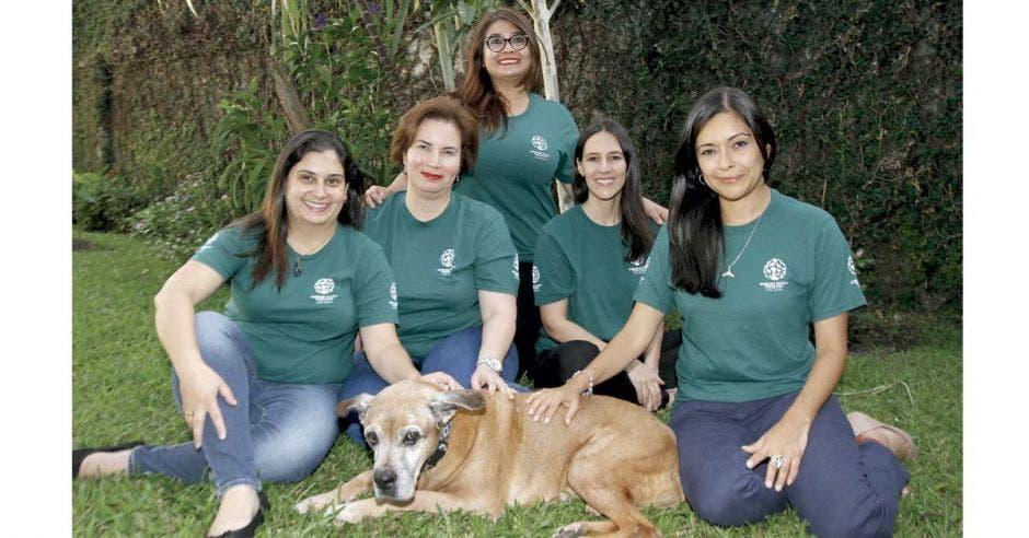 Humane Society International tiene su sede para América Latina en barrio Escalante, San José. Esteban Monge/La República