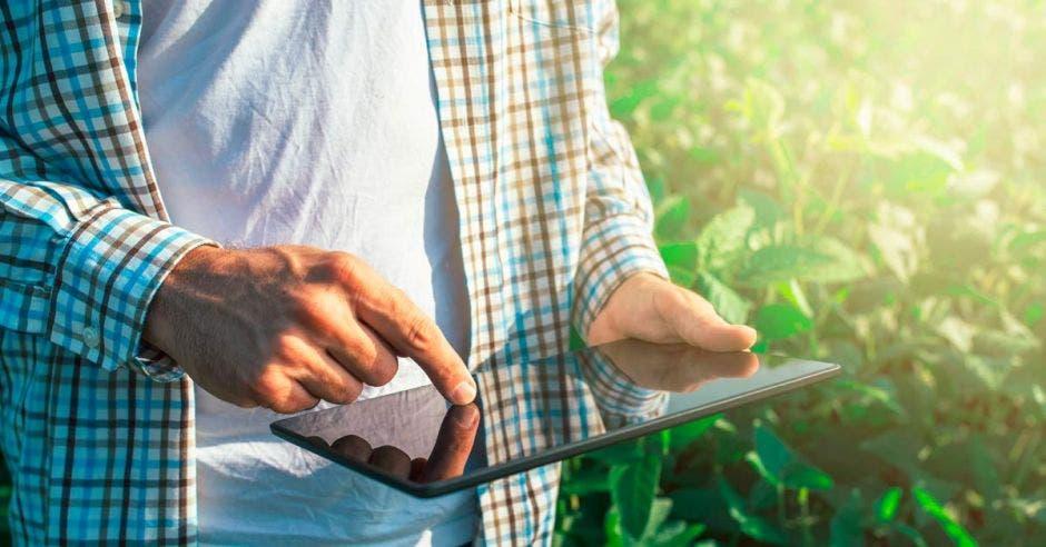 Un trabajador agropecuario con una tablet cerca del pasto