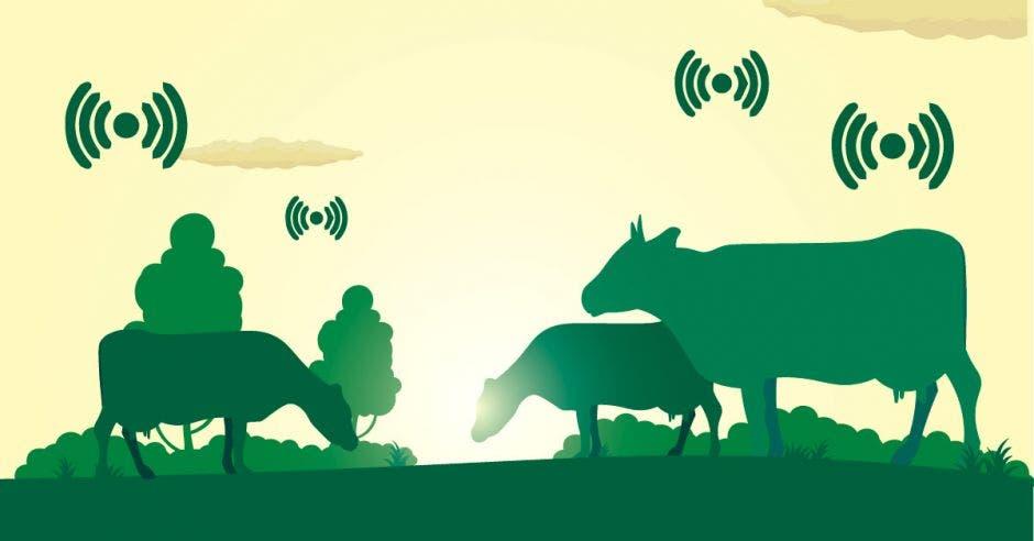 Vacas verdes pastando y, encima de ellas, señales de Wi-fi