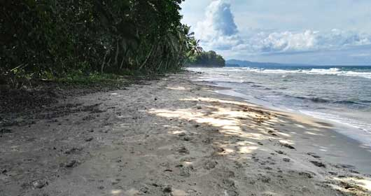 Playa Punta Uva