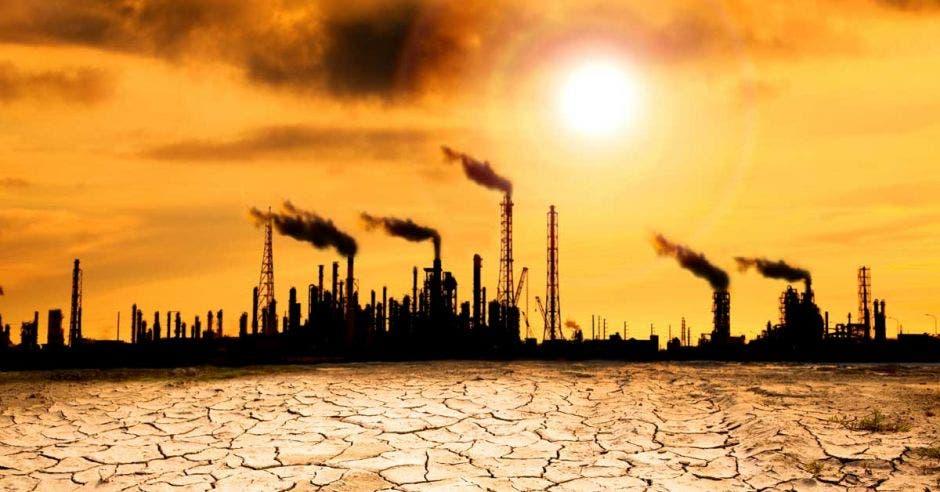 Una planta que muestra los efectos de los gases invernaderos